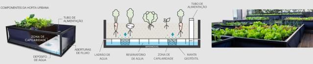 arquitetura-sustentavel-horta-urbana1