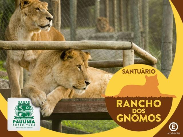 Masterplan_Sustentavel_Rancho_dos_Gnomos